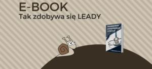 Jak wykorzystać e-booka do generowania leadów?