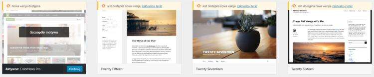 Optymalizacja techniczna Wordpress - Case study